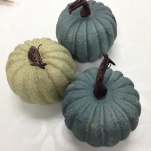 Mini Pumpkins from Michaels